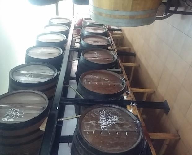 Barriles. Proveedores de vino