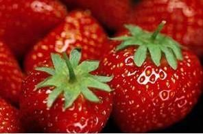 Frutas. Gran variedad de frutas