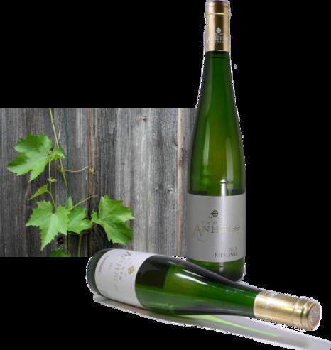 Vino Blanco.Variedad Riesling