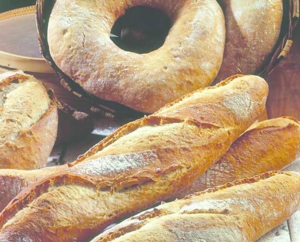 Pasta Fresca Congelada.Variedad de productos
