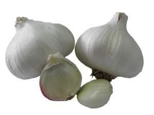 Ajos. Ajos y otros vegetales
