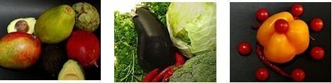 Proveedor de frutas y verduras. Nacionales e importadas