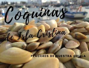 Envío gratis comprando coquinas de la Isla Cristina